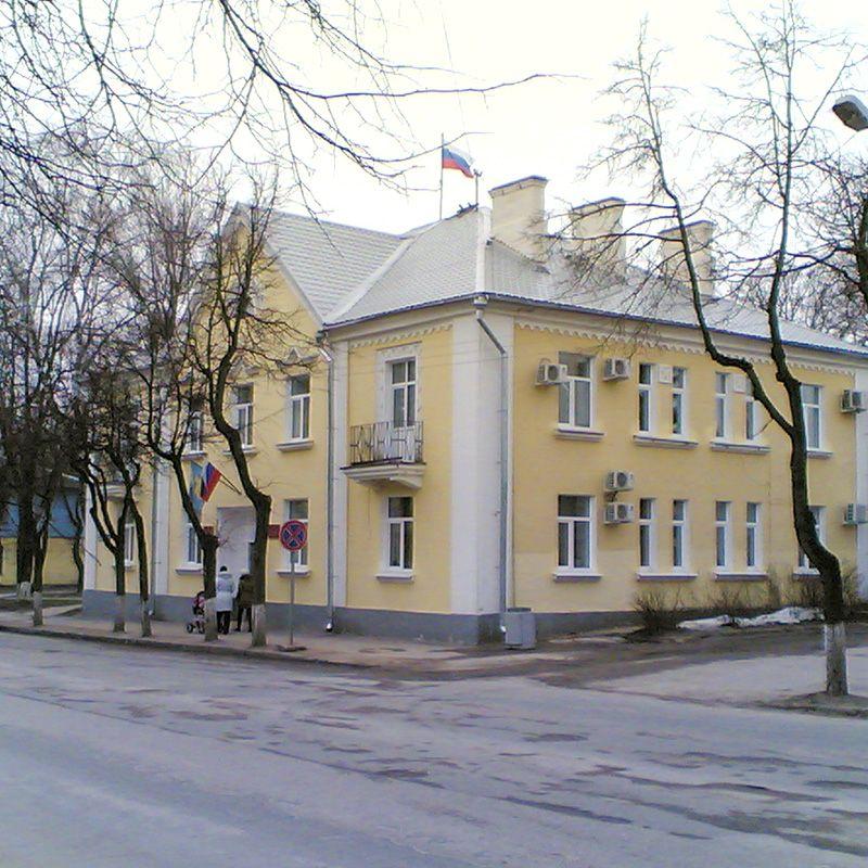 Выборы в представительные органы местного самоуправления Псковской области