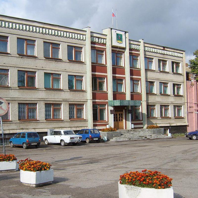 Дополнительные выборы депутата Собрания депутатов Невельского района