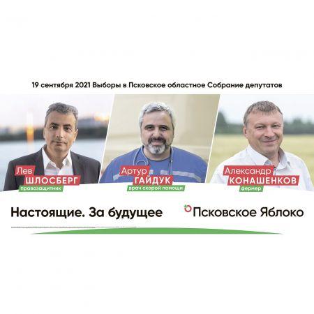 Предвыборные баннеры Псковского «Яблока» незаконно пытаются запретить
